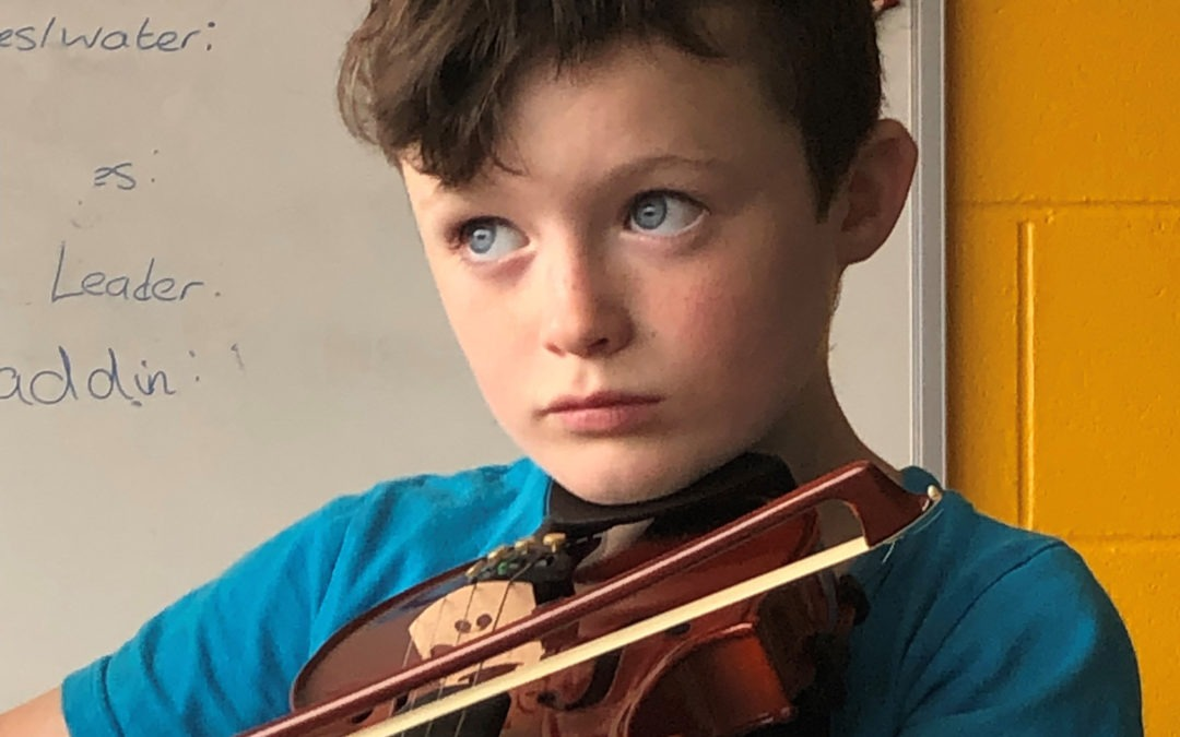 Music to everyone's ears – LEADER funds 60 violins in Louth